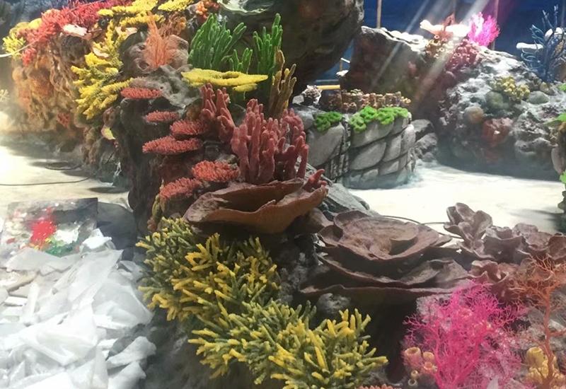 大连水下珊瑚礁造景设计