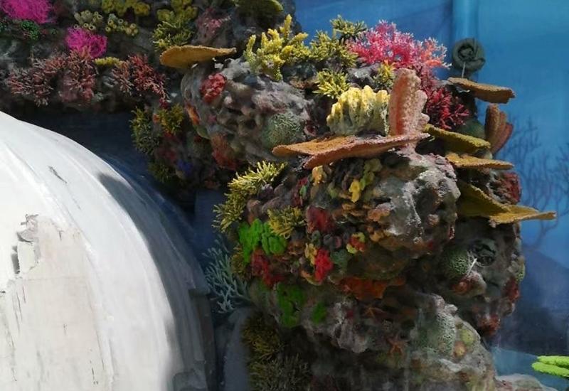 大连珊瑚礁造景