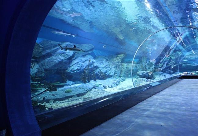 武汉水下造景设计