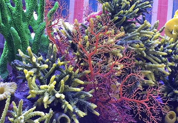 人工珊瑚造景