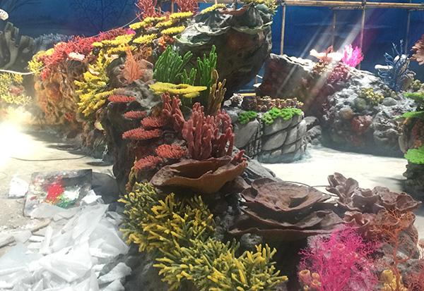 仿真珊瑚展池设计