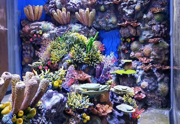 海洋公园景观造景