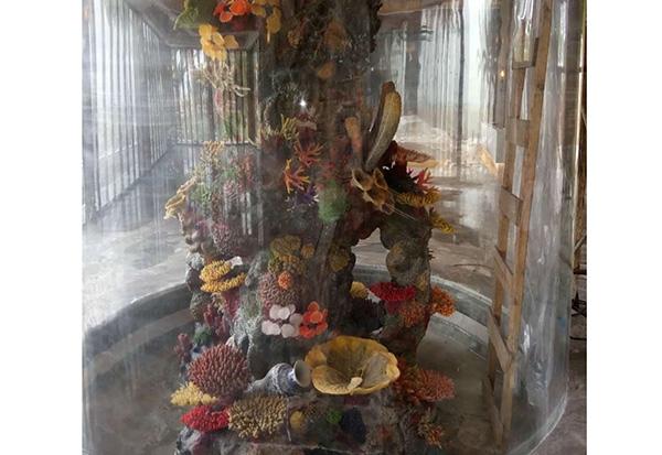 秦皇岛人造珊瑚