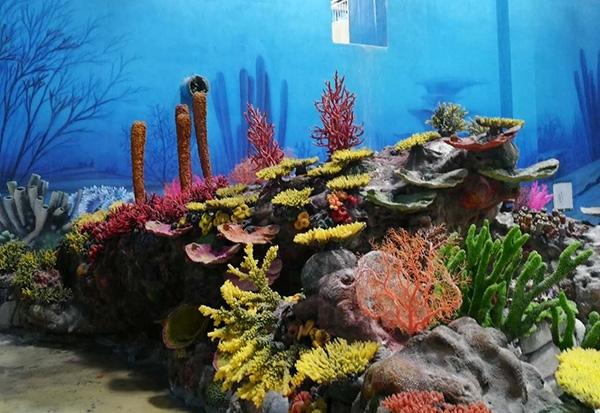 人造珊瑚展池