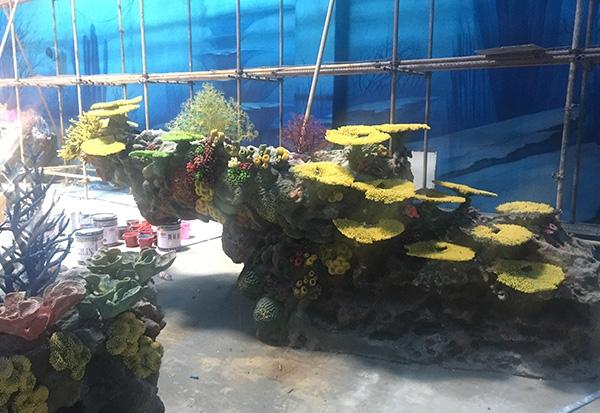 珊瑚展池设计