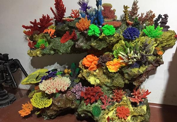 珊瑚展池造景