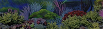 仿真珊瑚展池